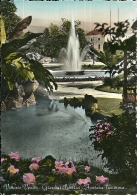 VITTORIO VENETO  TREVISO  Giardini Pubblici Fontana Luminosa - Treviso