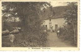 35. WATERMAEL : Vieille Ferme - Variante Peu Courante - Watermael-Boitsfort - Watermaal-Bosvoorde
