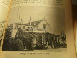 Bad Ischl Cottage Im Kaiserliches Park Austria Print Engraving  1907 - Stiche & Gravuren