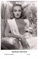 MARLENE DIETRICH - Film Star Pin Up PHOTO POSTCARD- Publisher Swiftsure 2000 (17/146) - Cartoline