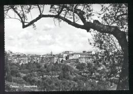 CANINO - VITERBO - 1965 - PANORAMA - Viterbo