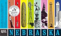 Amateur Radio QSL - WA0LRQ - Pleasanton, NE -USA- 1966 - 2 Scans - Radio Amateur