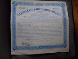 """Certificate""""Canada Land & Irrigation Company """"1948 Très Bon état - Agriculture"""