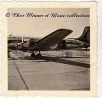 1951 - AVION F BELR AIR FRANCE - BERLIN NUREMBERG - PHOTO 6.5 X 6.5 CM - Aviation