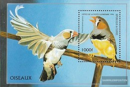 Guinea Block502 (complete Issue) Unmounted Mint / Never Hinged 1996 Birds - Guinea (1958-...)