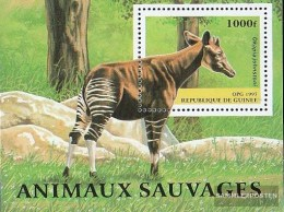 Guinea Block508 (complete Issue) Unmounted Mint / Never Hinged 1997 Locals Animals - Guinea (1958-...)