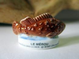 Fève Brillante - Protégeons La Mer - WWF - Le Mérou - Animaux