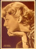 Cartolina Attrici Cinema - Ann Shirley - Formato Grande Non Viaggiata - Acteurs