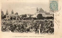 CPA COULONGES SUR L AUTIZE.  Chateau Et Logis, Vus De Derriére. 1905. - Coulonges-sur-l'Autize