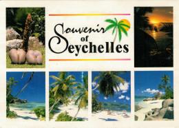 SEYCHELLES   MALE & FEMALE COCO DE MER-  SUNSET- BEACH SCENERIES     (VIAGGIATA) - Seychelles