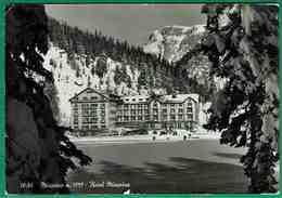 Ct - 978 -    Misurina - Hotel Misurina - Belluno
