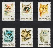 1993 - Les Chats Mi 4885/4890 Et Yv 4076/4081 MNH - 1948-.... Republiken
