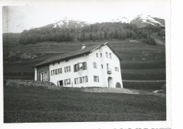 A Identifier Maison Haus 1961 Samedan - Cartes Postales