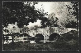 BOIGNY Le Pont (Montenegro) Loiret (45) - France
