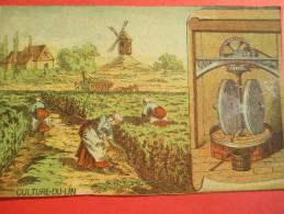 Chromo/Gravure/Métiers Du XIXéme/Image Pédagogique/Culture Du  Lin/LEFEVRE/Vers 1870-1880      GRAV122 - Trade Cards
