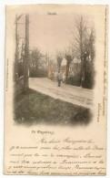 NEVELE - De Wagenbrug. Coloriée, Oblitérations Gand, Beaumont, Ans, Nevele 1902 - Nevele