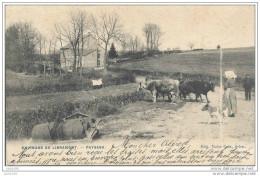 BERNIMONT ..-- Paysage . Vaches . 1906 Vers YVOIR ( Mr Le DOCTEUR Alfred BAUDART ) . Voir Verso . - Neufchateau