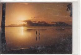 TAHITI - Scène De Pêche - Tahiti