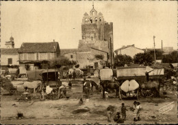 13 - SAINTES-MARIES-DE-LA-MER - Pélérinage Du 25 Mai - Bohémiens - - Saintes Maries De La Mer