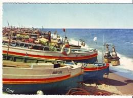 Cpm Cpsm Le Barcares - Port Barcares