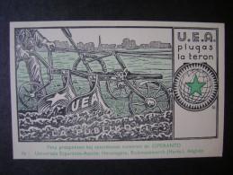 ESPERANTO - POST CARD  U.E.A. FLEA LA THERON - Esperanto