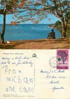 Flamboyant Tree, Kenya Postcard Posted 1970 Stamp - Kenya