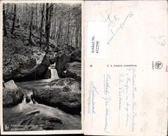 452298,Luxembourg Le Hallerbach Waldbach Wald - Ansichtskarten