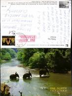 452947,Thailand Elephant Elefanten Fluss Überquerung - Thaïland