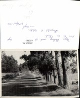 452981,Foto AK India Meghalaya Upper Shillong Road Straßenpartie - Indien