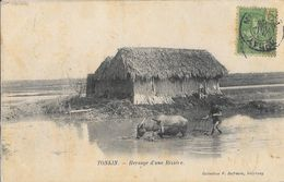 Indochine - Tonkin - Hersage D'une Rizière - Collection P. Dufresne, Haïphong - Carte Précurseur - Viêt-Nam