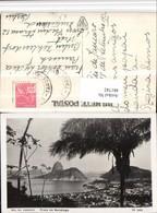 481742,Brazil Rio De Janeiro Praia De Botafogo Totale Palme - Brasilien