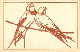 [DC3119] CPA - UCCELLI SU RAMO - Non Viaggiata - Old Postcard - Uccelli
