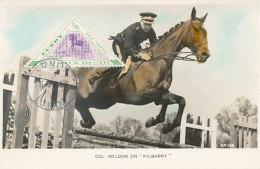 D24820 CARTE MAXIMUM CARD 1956 LUNDY - HORSE JUMPING TRIANGULAR STAMP CP ORIGINAL - Horses