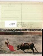 489382,Corrida De Toros Despues De La Estocada Stierkampf Stier - Stierkampf
