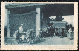 Flamme NICE  Exposition D'Horticulture 1929 AGRICULTURE - NOUVELLE TERRE - L´activité Dans L´Administration- Tracteur - - Nizza