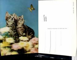491005,3D 3 D 3-D Karte Wackelkarte Two Kitties Katzen Schmetterling - Sin Clasificación