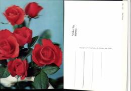 490979,3D 3 D 3-D Karte Wackelkarte Red Roses Rote Rosen - Sin Clasificación