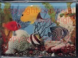 465866,3D 3 D 3-D Karten Fische Aquarium - Ansichtskarten