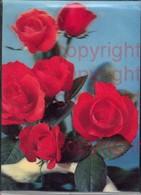465870,3D 3 D 3-D Karten Rote Rosen Blumen Blüten - Ansichtskarten