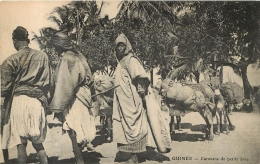 GUINEE CARAVANE DE PETITS ANES - Guinée Française