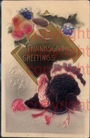 465905,Präge Material Ak Stoff Früchte Truthahn Thangsgiving Greetings - Ansichtskarten