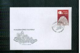 Slowenien / Slovenia 2016  Maribor  World Lace Congress Commemmorative Postmark - Textiel