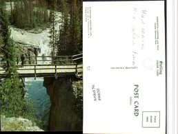 496650,Alberta Jasper National Park Sunwapta Canyon And Falls Brücke - Alberta