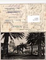 496617,Argentina Buenos Aires Paseo Colon Palmen - Argentinien