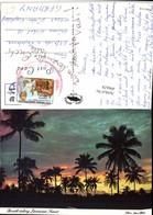 496628,Jamaica Sunset Sonnenuntergang Palmen - Ansichtskarten