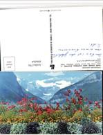 496664,Alberta Lake Louise And Victoria Glacier Blumen Bergkulisse - Ohne Zuordnung