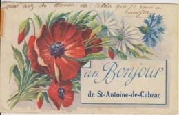 D33 - SAINT ANTOINE DE CUBZAC - UN BONJOUR DE ST ANTOINE DE CUBZAC (FANTAISIE AVEC FLEURS) - Autres Communes