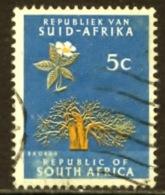 Zuid Afrika 1961, South Africa, RSA , Afrique Du Sud, Sudafrika, Baobab, Boom, Tree, SG 204, YT 254, Mi 293 - Gebruikt