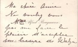 Madame Alfred BRUGMANN Château De Walzin Carte De Visite 19ème Siècle - Cartes De Visite