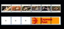 AUSTRALIA - 1992  45c. THREATENED SPECIES   P & S  PEMARA  EXPRESS POST  1 KOALA REPRINT MINT NH - Nuovi